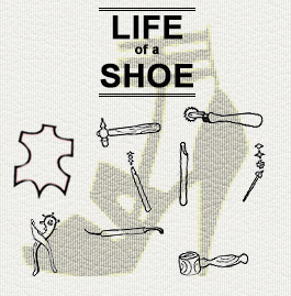 life_of_a_shoe